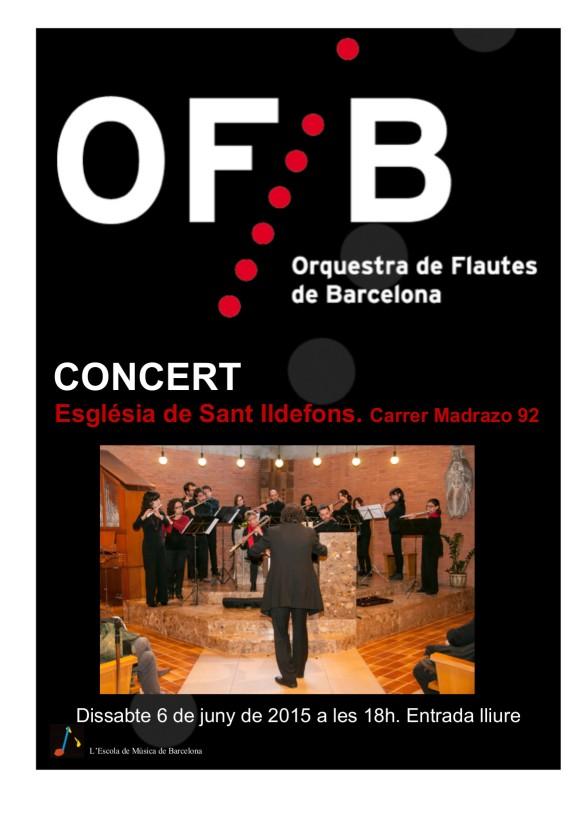 Cartell concert Sant Ildefons